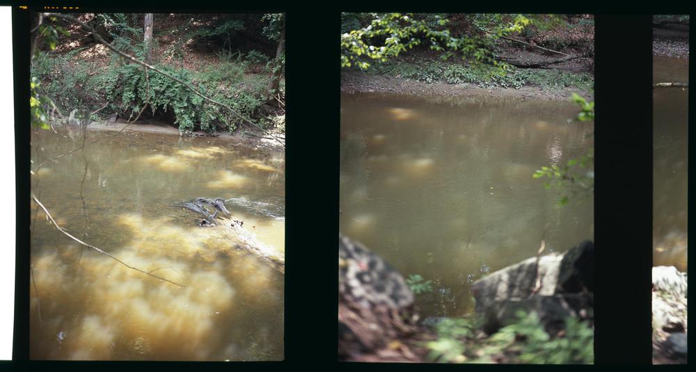 2010_river_05.jpg