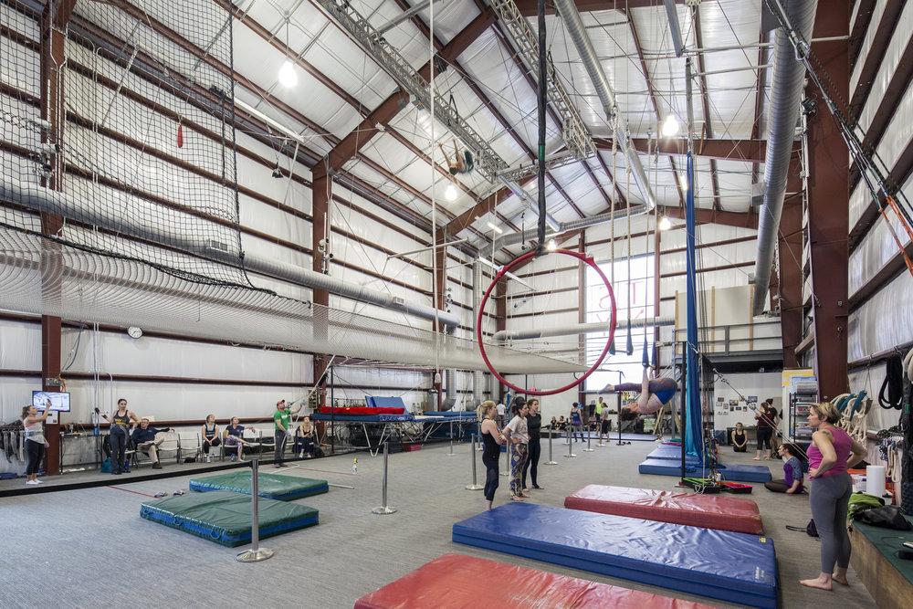 Trapeze School of New York  Washington DC  Teass \ Warren   Back to Portfolios