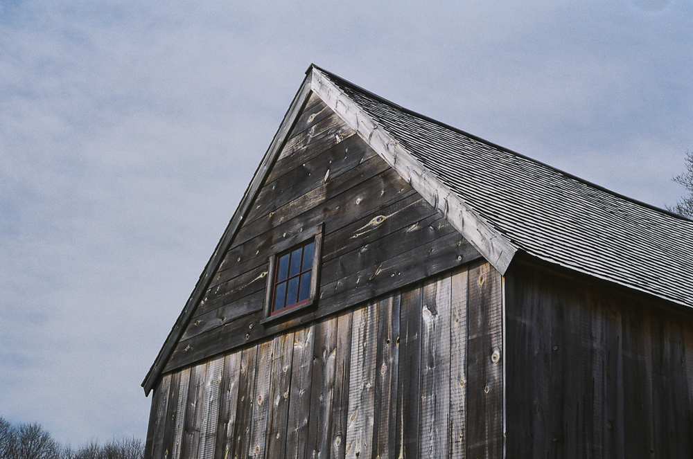 Brookwood Community Farm, MA  March 2016  Canon 35mm SLR  Kodak Film