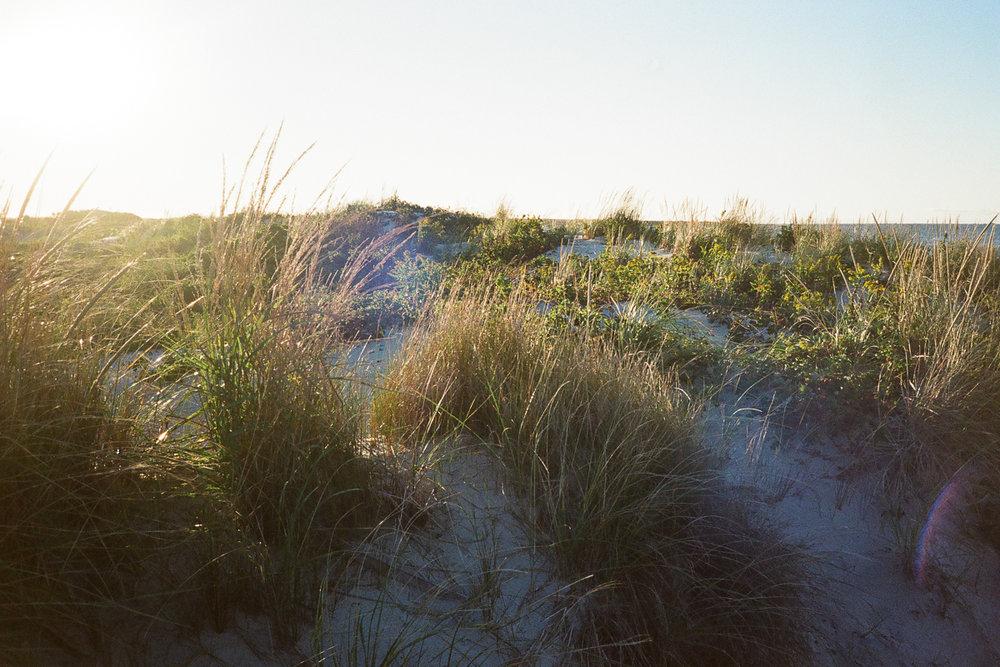 Rhode Island  Fall 2016  35mm color film
