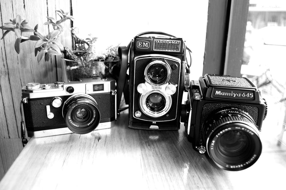 Left to right:  Canon VT Deluxe, Yashica Mat EM and  Mamiya 645 1000s