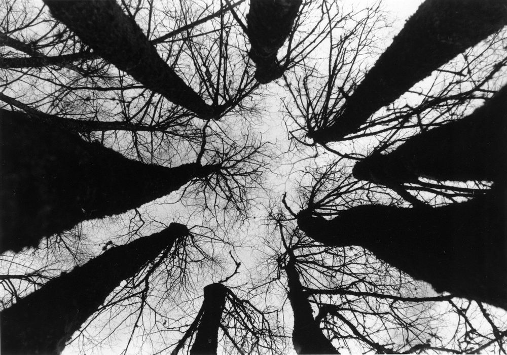 BROKEN SKY | PENTAX SPOTMATIC | ANDREY ORESHNIKOV