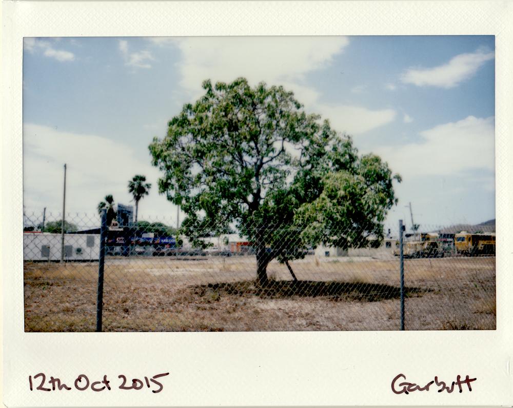 2015-10-12.jpg