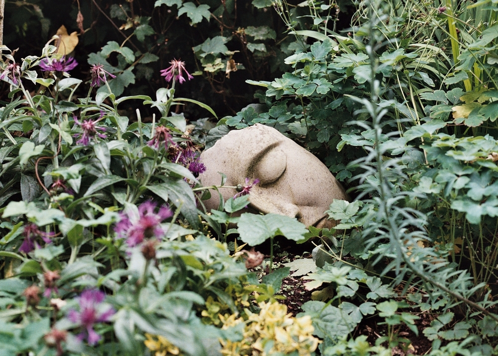 Resting |Canon EO S750 |Rhianne Hart
