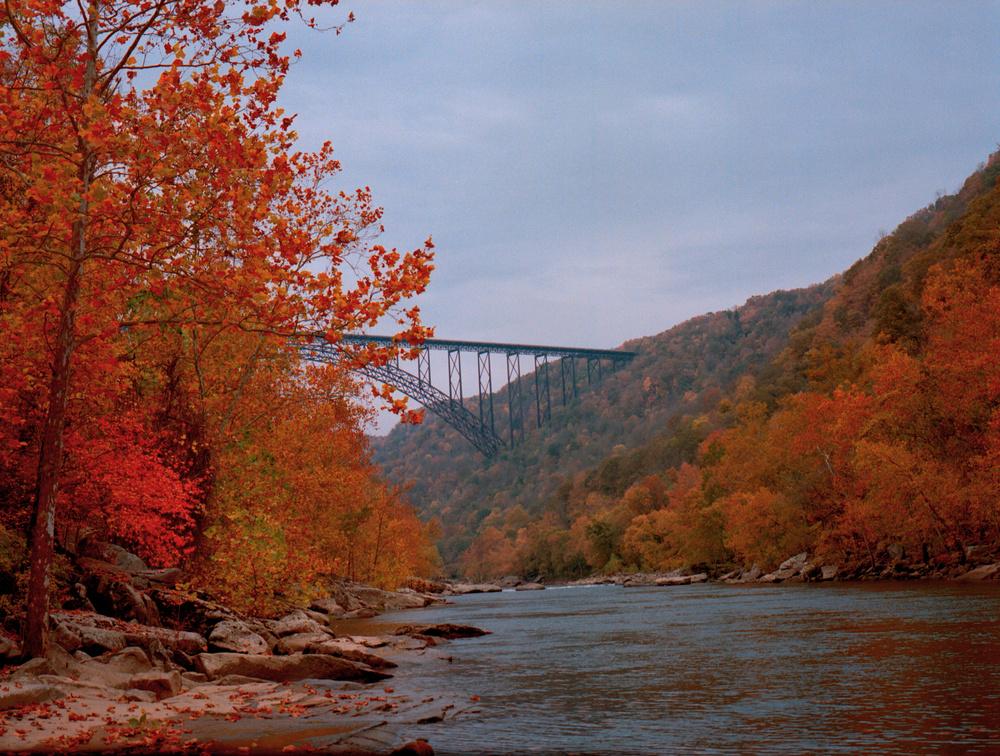 Under the Bridge | Mamiya 645-1000S | 80mm / f2.8 | Portra 400 | TonyTurley