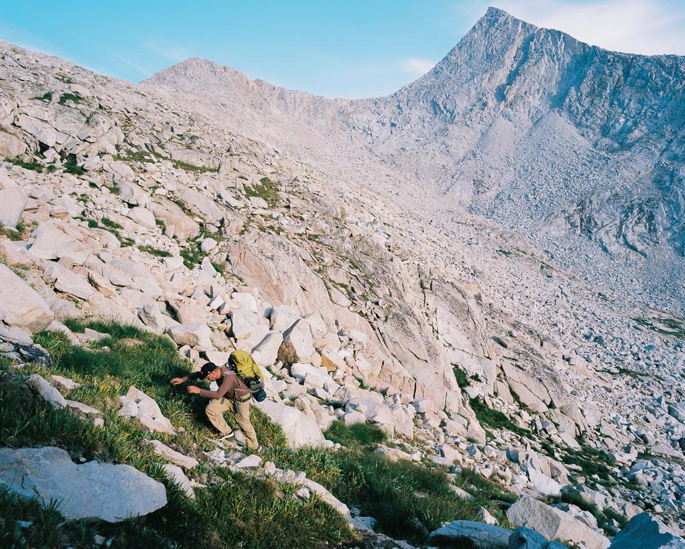 Ascending | Mamiya 7II w/ 50mm | Daniel MacDonald