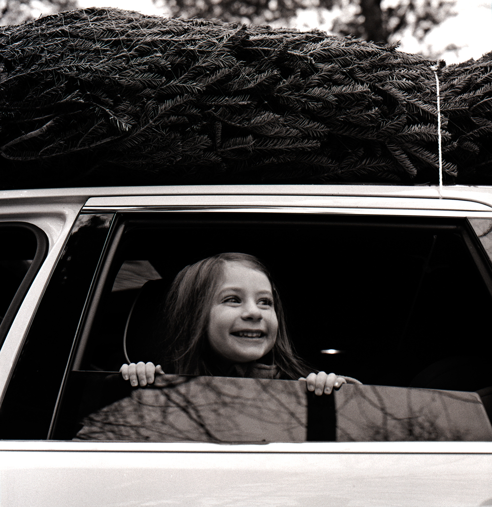 Bringing Home the Tree | Hasselblad 500 CM Ilford HP5+ | Ellen Goodman