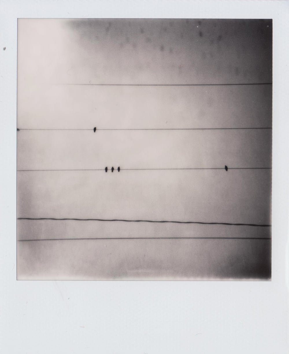 The Hotel | Polaroid SX-70 | Abigail Crone