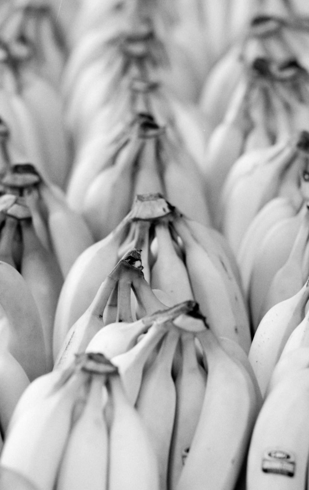 Achim Burkard |Banana |Minolta SRT101 |Ilford Delta Pro 400