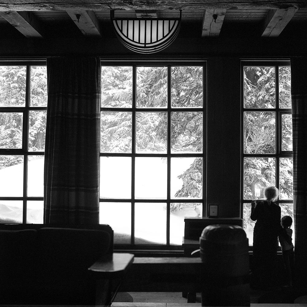 Last Look at Winter | Hasselblad 500cm 80mm CT | Aaron Bieleck