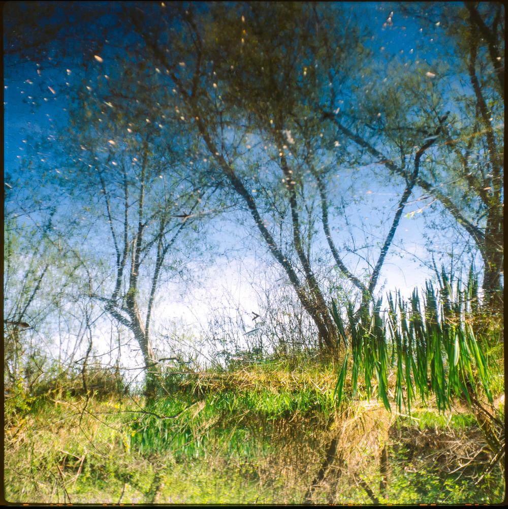 Kevin Rosinbum |Springtangular |Franka Solida III |Radionar 80mm | Provia 100F