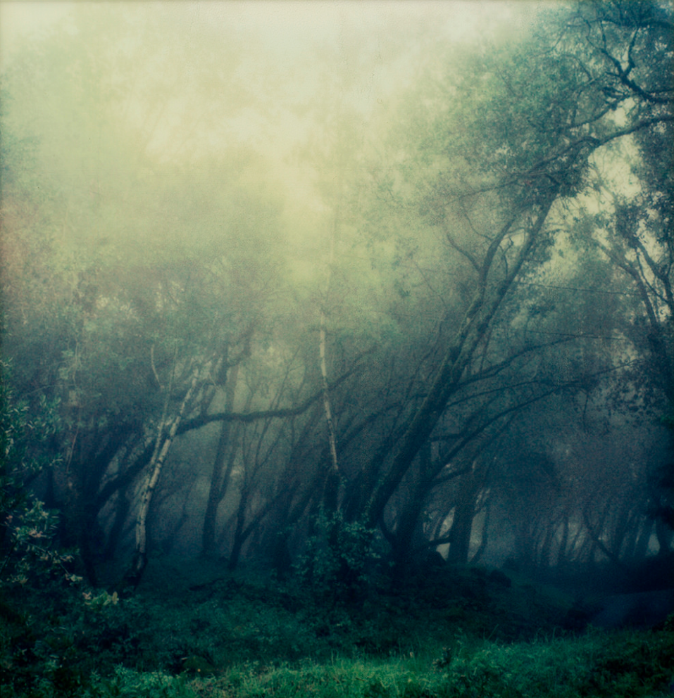 "Laura Alice Watt - ""Rain"""