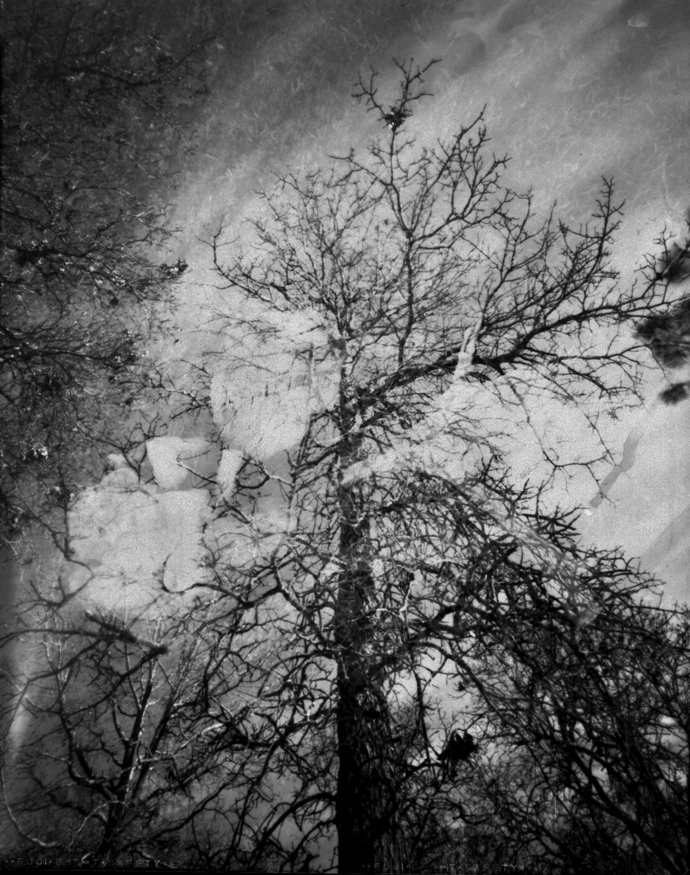 Free formed funkified filth | Home made 8x10 pinhole | Fuji green x-ray | Bobby Kulik