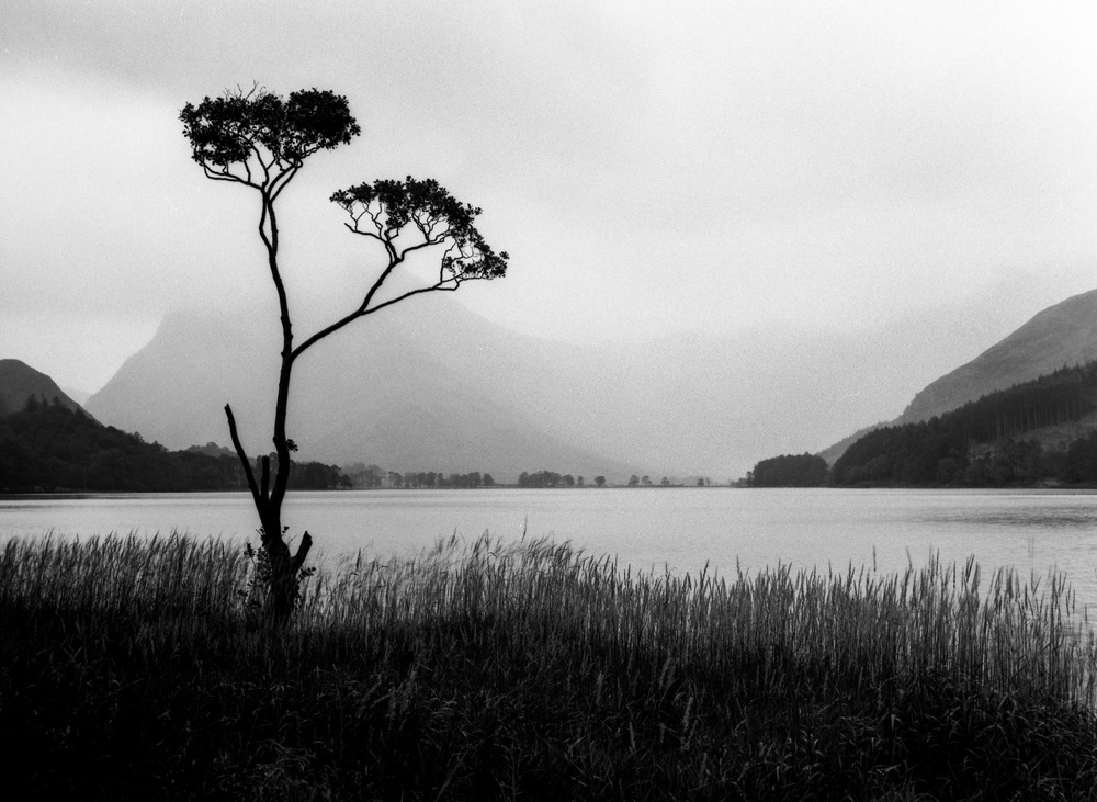 Mamiya 645 Pro TL, 80mm, Delta 100. I had Velvia and Delta loaded at the same time but the only image I had for this shot was a strong silhouette against the mountains behind.  With the rain softening the edges of the mountains it had a sense of mystery to me that colour wouldn't have had.