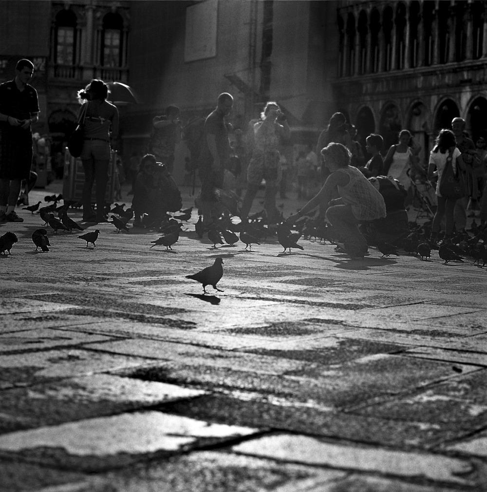 SanMarco | Venice | Hasselblad 500cm | Ralph Whitehead