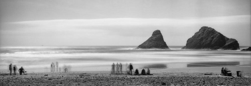 Sea Life | Fuji GW690 | H W Kateley