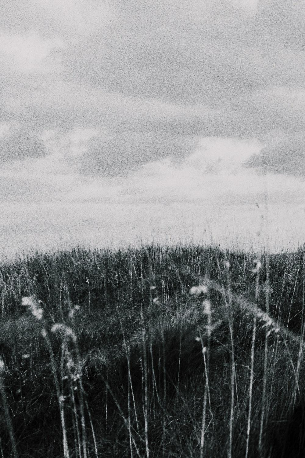Am I Awake | Canon Rebel | Stephanie Rodriguez