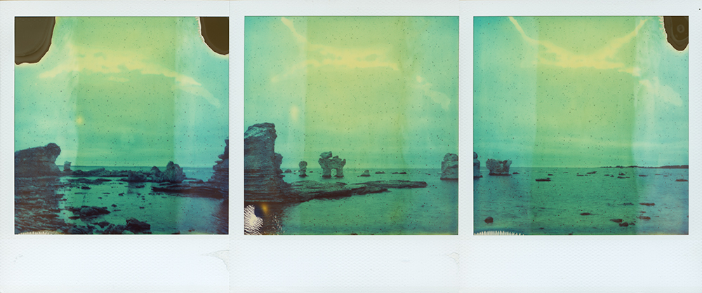 Hunden | SLR680 | Polaroid SX70 Film | Thomas Zamolo
