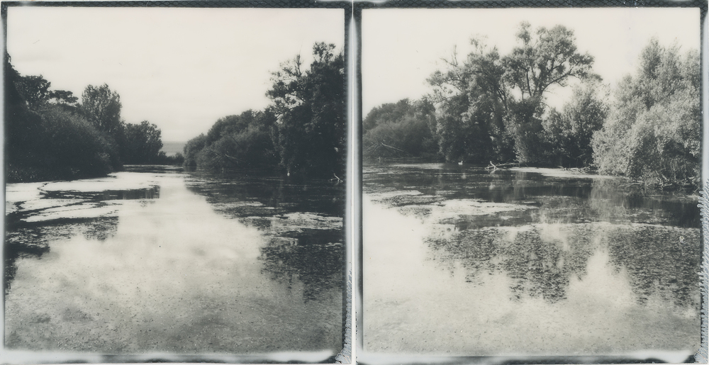 Swan Pond | SX-70 | Impossible Project Gen 2 Film | Mark Hillyer |