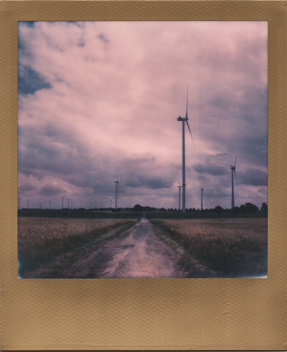 : Blowing in The Wind | SX70 | Expired Impossible Prioject Gold Frame Film | Karin Claus