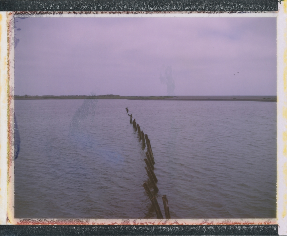 Untitled | Polaroid Land Camera | Fuji FP100C | Celeste Ortiz