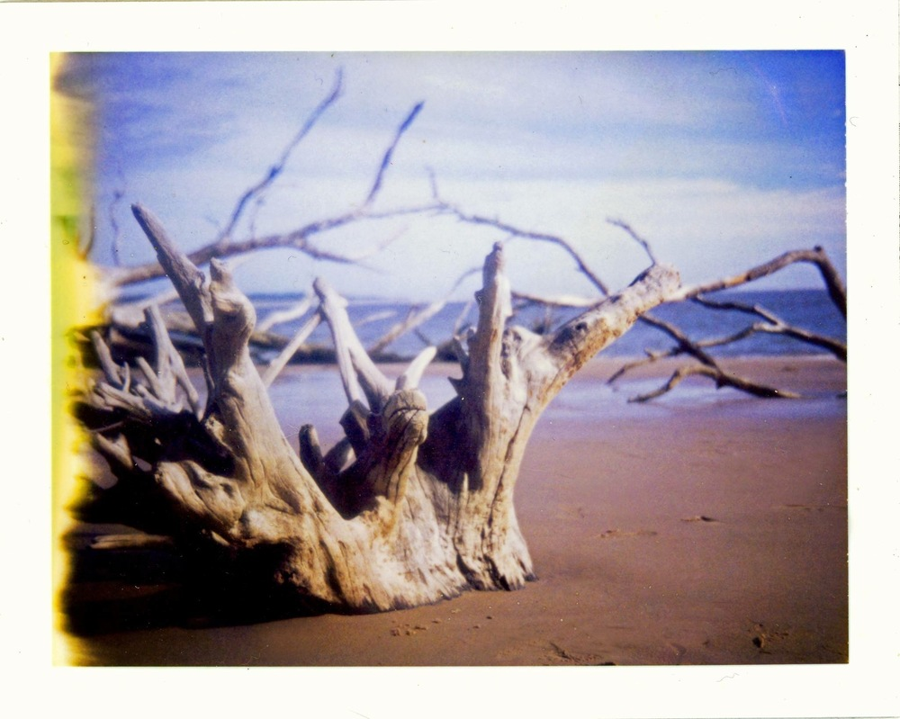 Crown of The Sea | Polaroid Color Pack 3 | Polaroid 690 Film | Aimee Lower