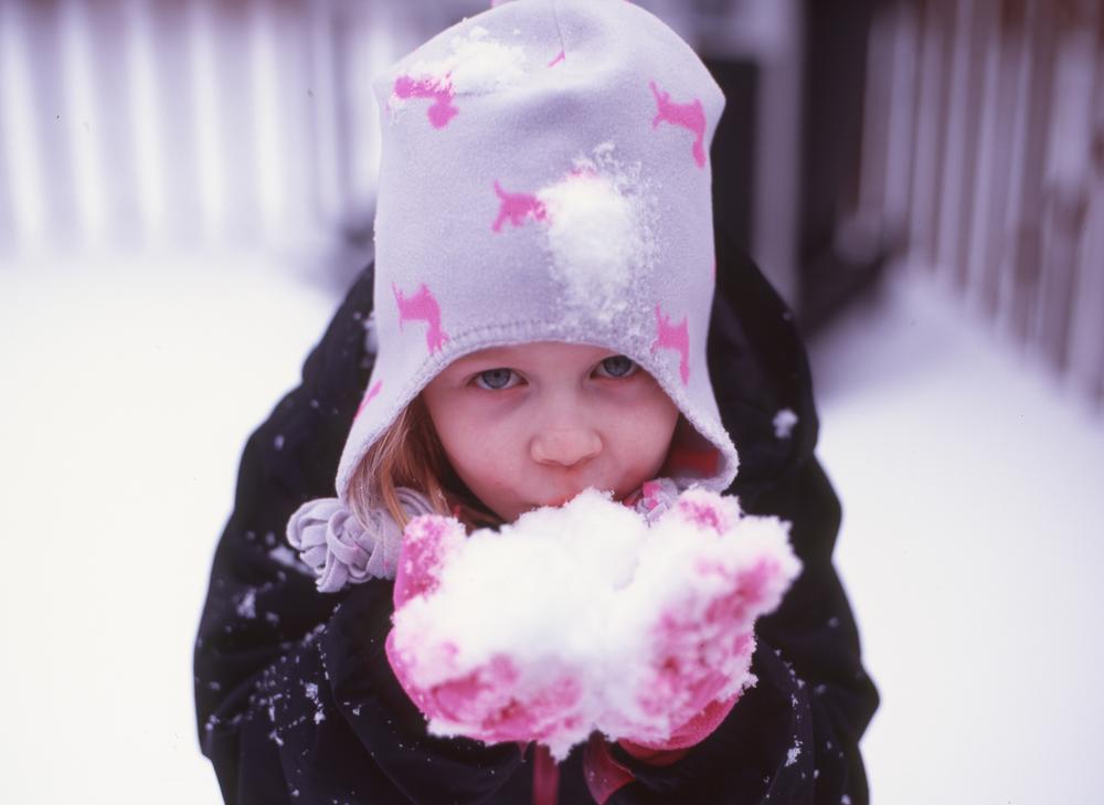 SnowDay_Mamiya645_80mm1.9_Velvia_BradLechner.jpg