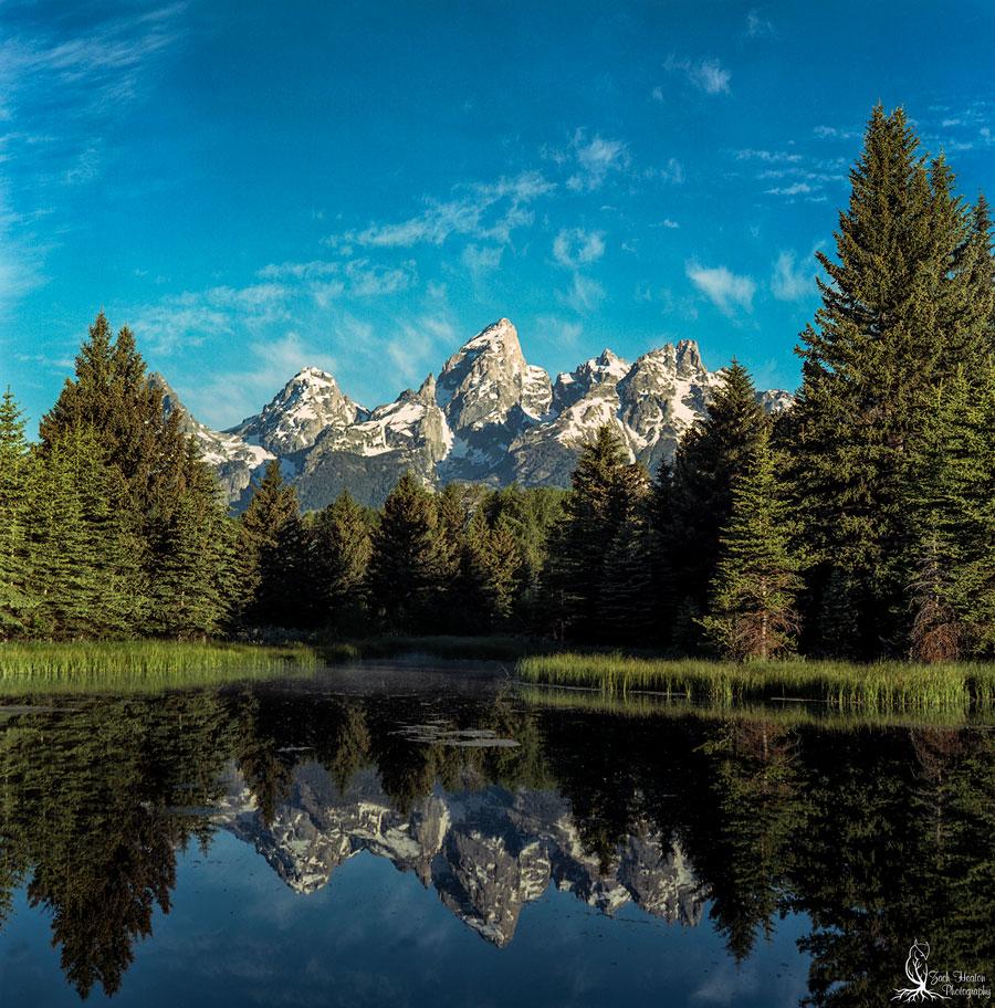Schwabacher Landing| Mamiya C3 | Really Right Stuff | Ektar100/120 F16-1\15 Under exposed 1/3 of a stop from my meter.