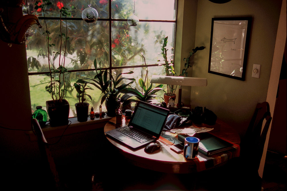 Kevin Rosinbum  | Light Office Hours | Pentax MZ-S | Velvia 100F