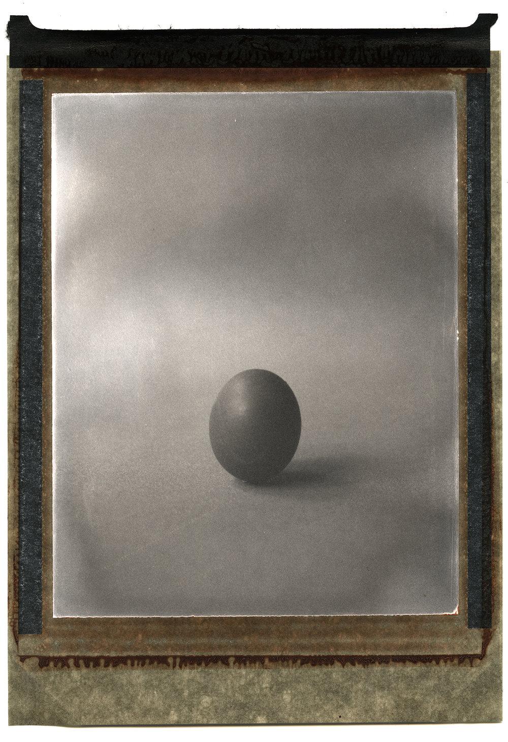 Beyond the Egg | Chamonix 4x5 | Polaroid Type 5 | Davide Maria Ferrari