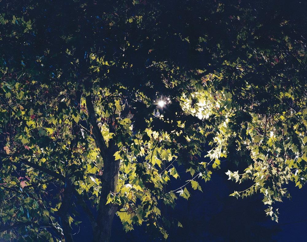 Stranger Things | Pentax 67 Kodak Ektar | Colton Allen