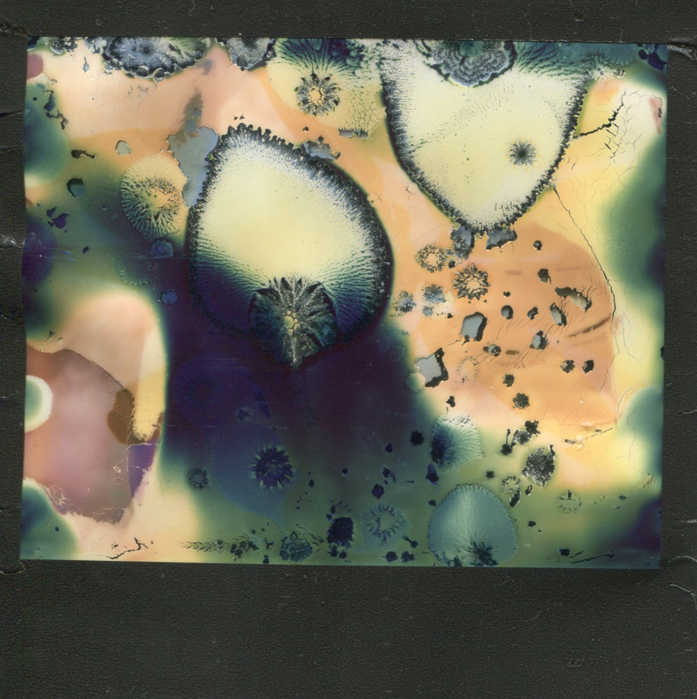 Cellular | Polaroid Spectra | Impossible Project Spectra Color | Destroyed | Lucinda Nicholas | @finnicle1