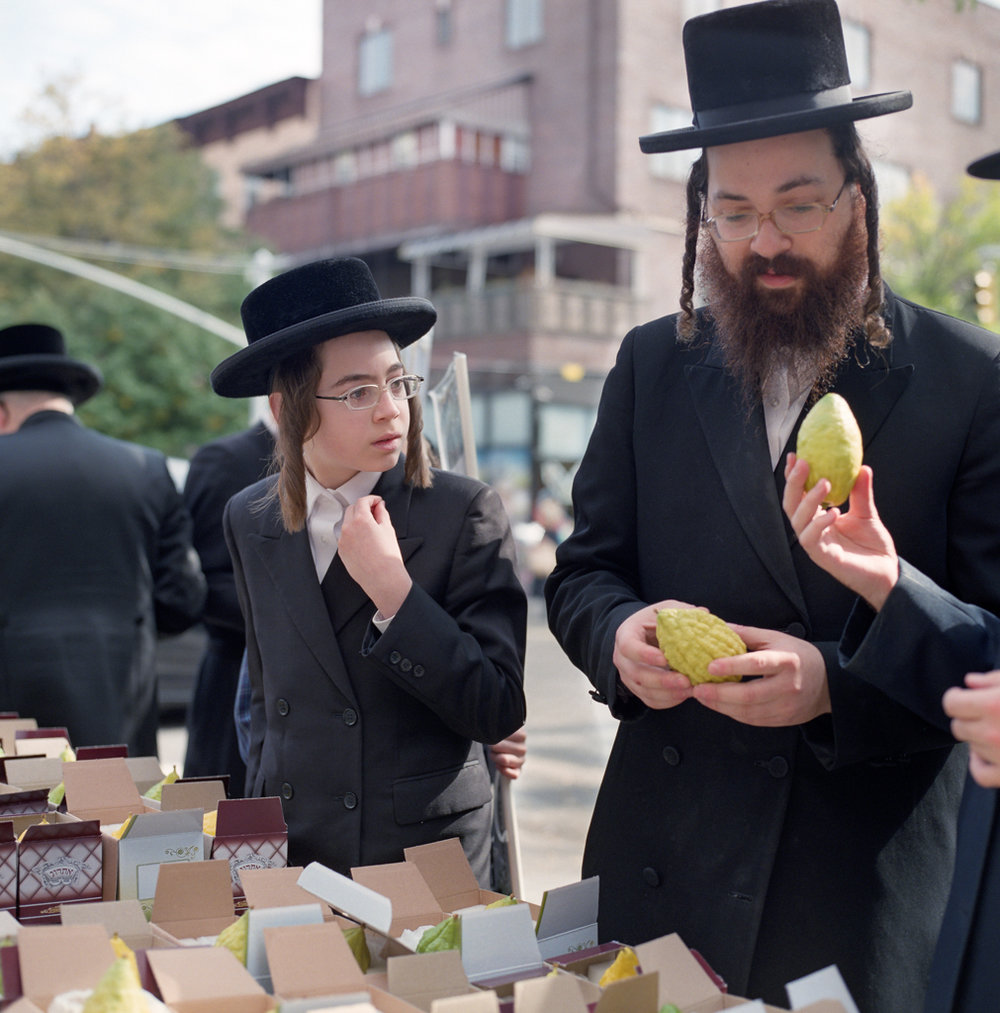 Shopping for Etrogs for the Sukkot Jewish Holiday in Williamsburg Brooklyn | Hassy 503cw | 80mmPlanar | Fuji Pro 400H | Adam Miller