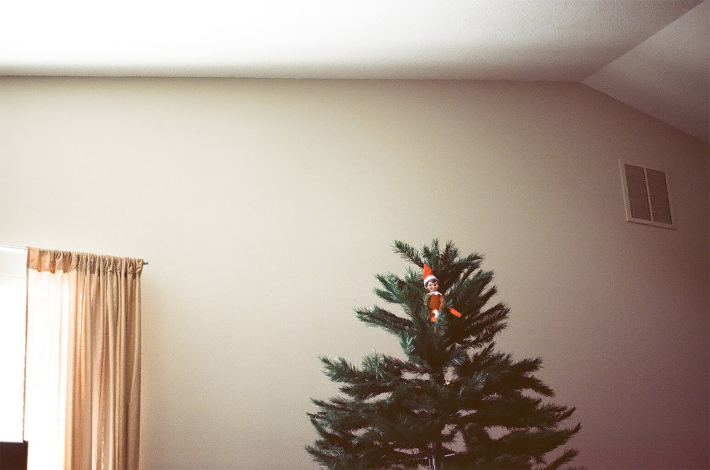 Tis The Season | Canon AE1 | Gabi Roozee