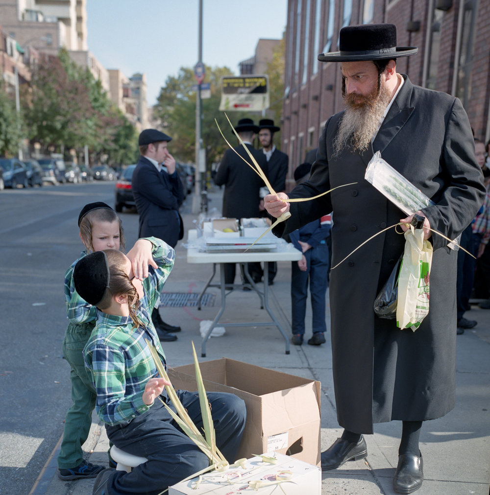 Shopping for special Lulav branches for the Sukkot Jewish Holiday in Williamsburg Brooklyn | Hassy503cw | 80mmPlanar | Fuji Pro 400H | Adam Miller