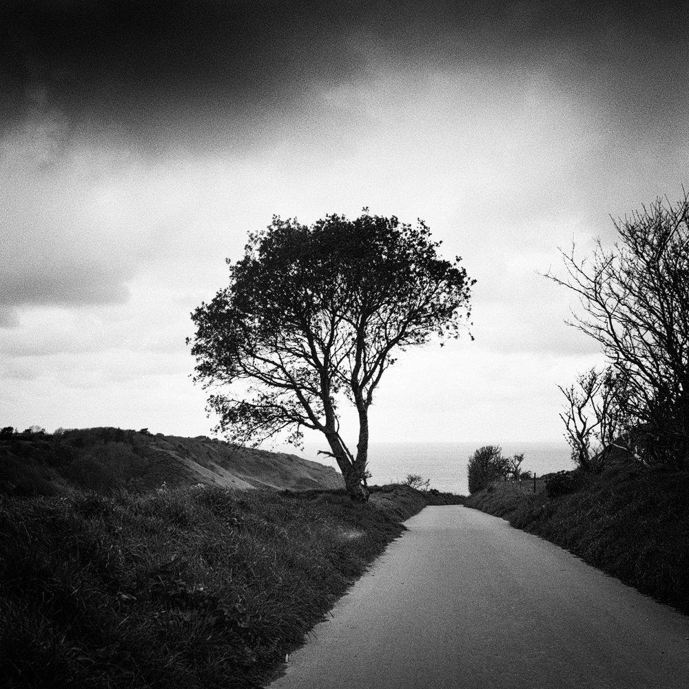 Darren Kelland - darren_kelland_8.jpg
