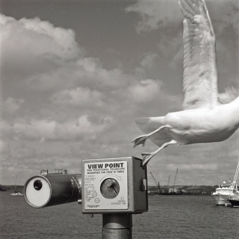 Untitled | Hasselblad | Roger Harrison