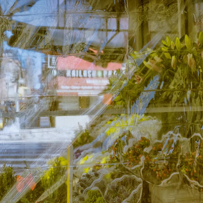 Florist | Mamiya Six Automat II Portra 160 E6 | rajmohan-fotograf