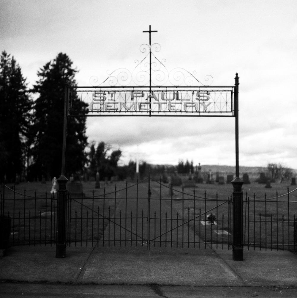 Signs Of Life | Kodak Tri-X 320 | Pentacon Six | Kelly-Shane Fuller