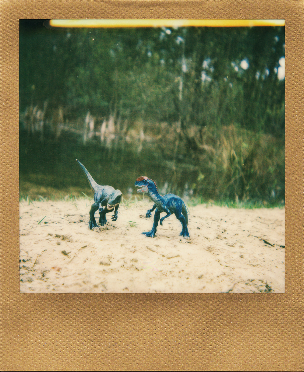 Walking with Dinosaurs | Polaroid 660AF | Impossible Color with Gold Frame | Karin Claus
