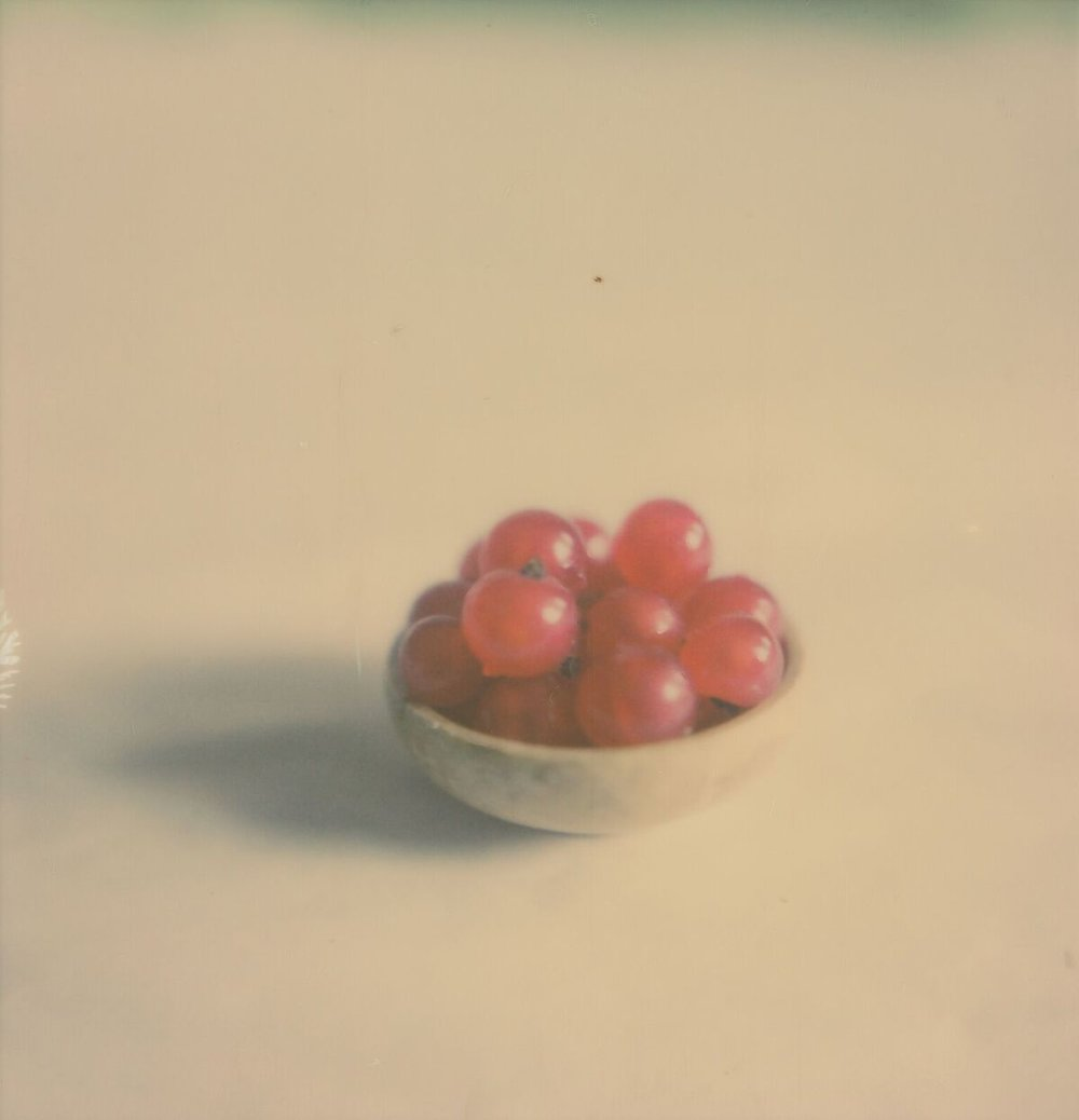 Red Currants | SX-70 Sonar | Impossible Project 600 | Anne Silver
