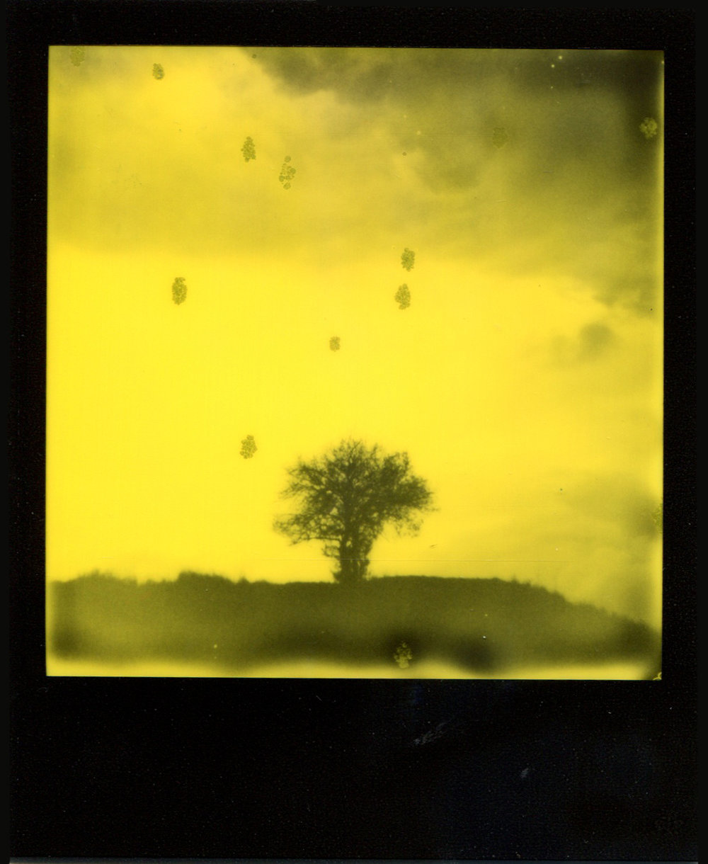 Eternal Loneliness | Polaroid Impulse AF | Impossible Colour 600 | Ostap Protsyk