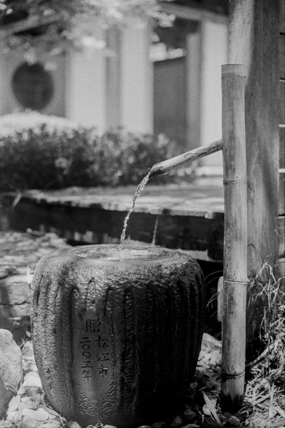 Sven Davisson | Japanese Garden New Orleans | NikonF5 | Tri-X 400