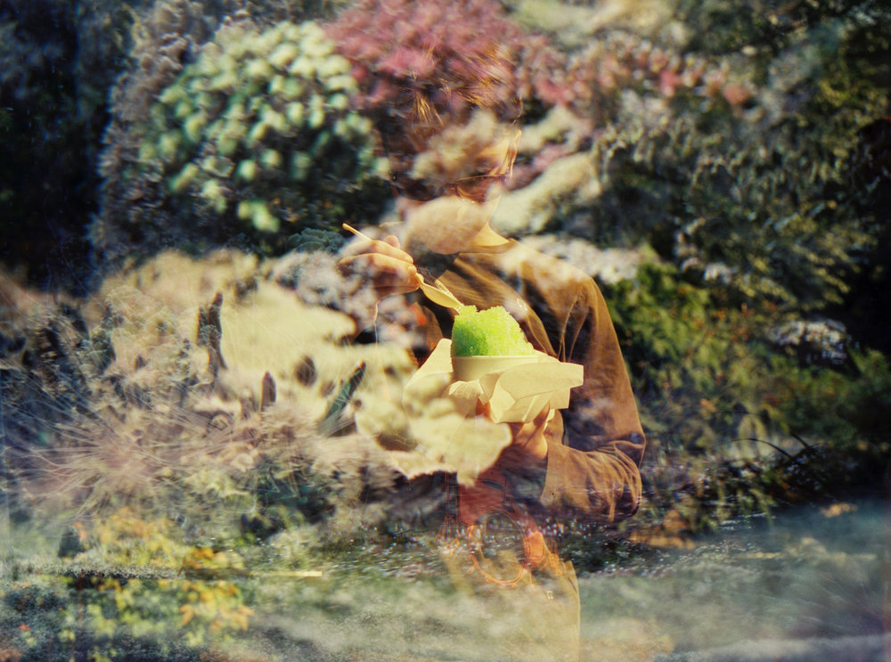 Life Aquatic and Confectionery | Nikon F100 | Cinestill 800T | Deborah Candeub