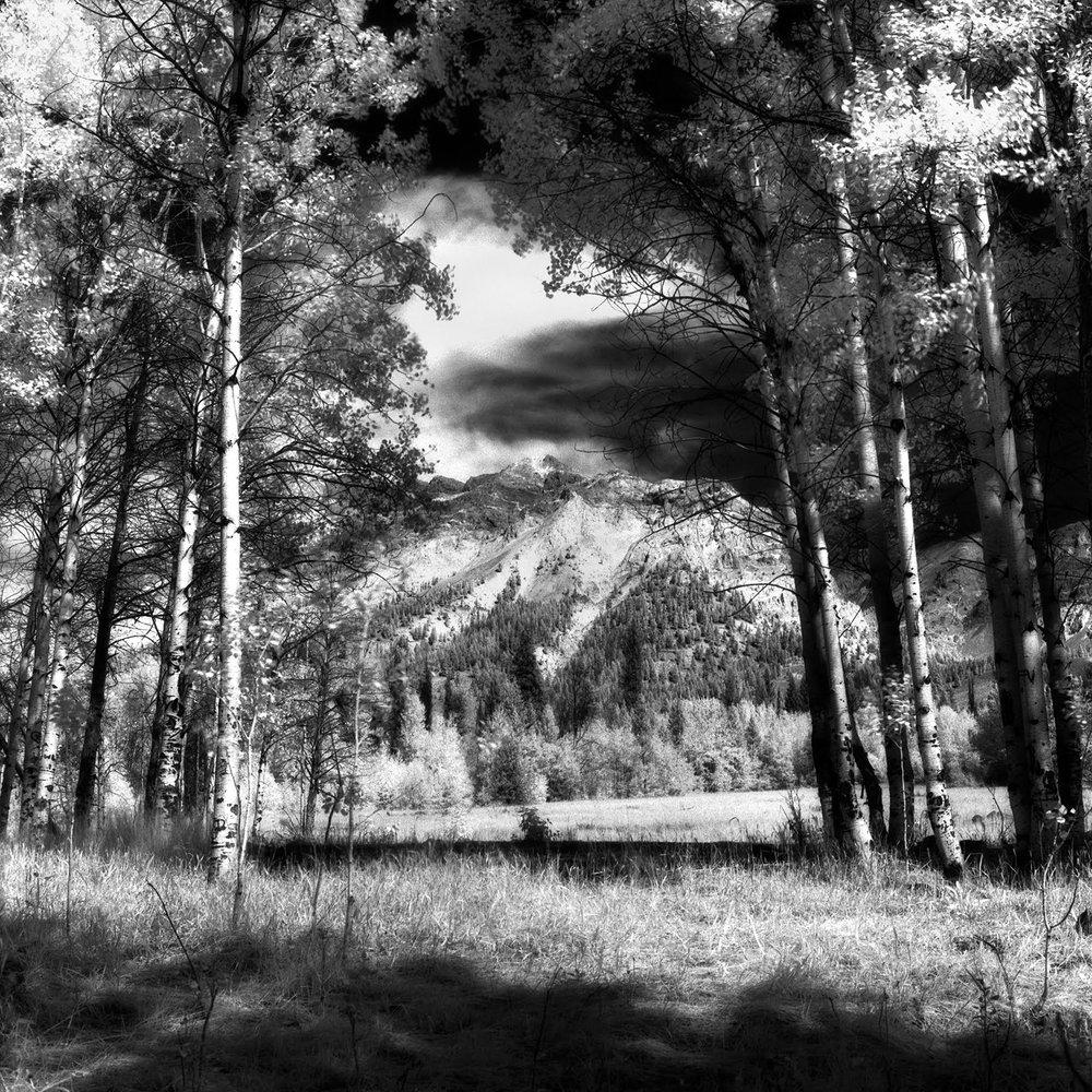 Boulders 2012, 2…Sept. 2012 Rolleiflex 6008i, 50mm Distagon FLE, Efke IR820 Aura