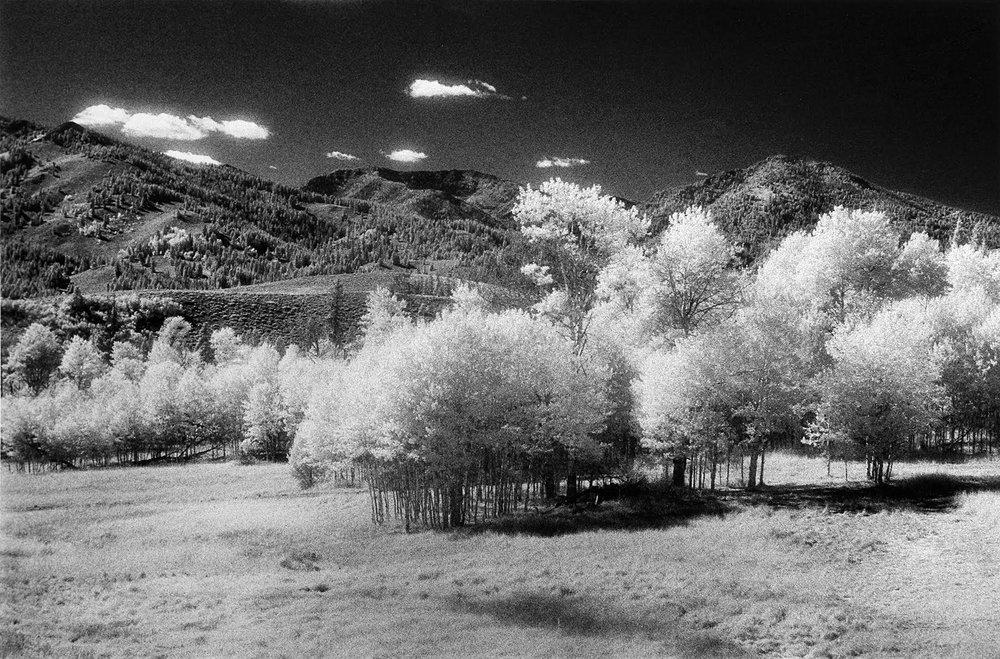 Boulder Aspen Grove…Sept. 2005 Rolleiflex 3003, 50mm Planar, Kodak HIE Infrared