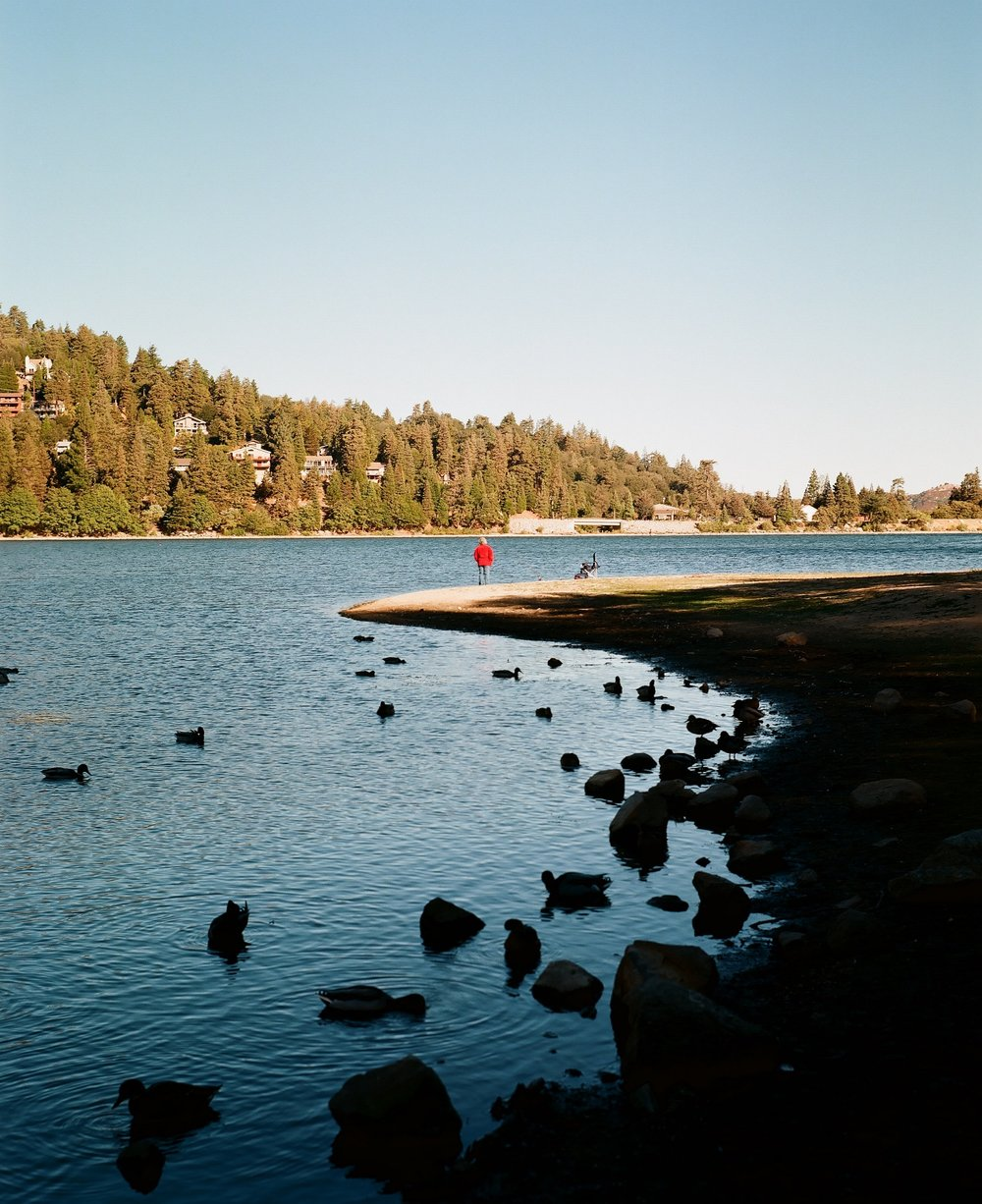Crestline, California_Mamiya Super 23, 3.5f=100m_Kyle Everett Smith_5.jpg
