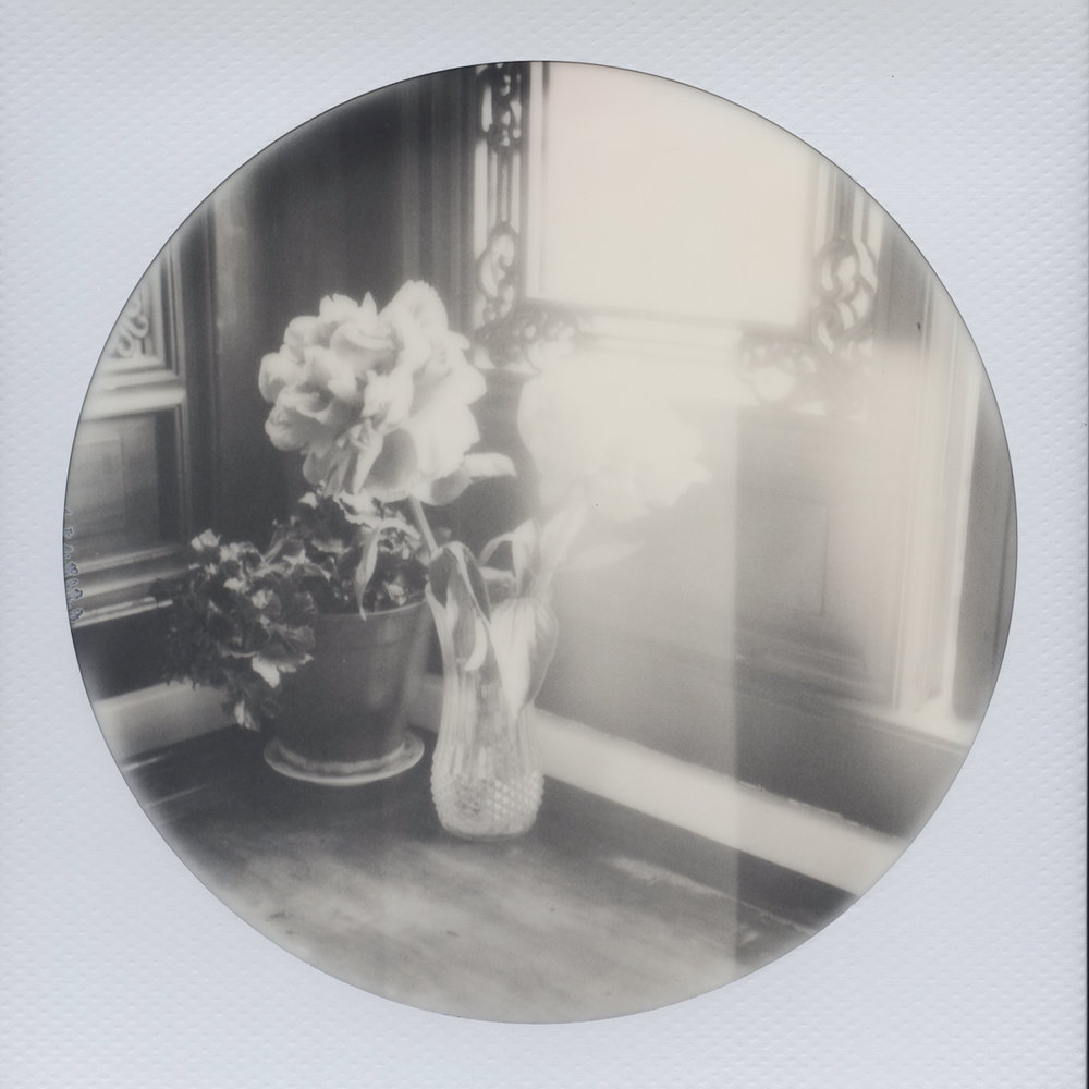 Lan Su Roses | SX-70 | Impossible Black and White 600 Round Frame | Heather Polley