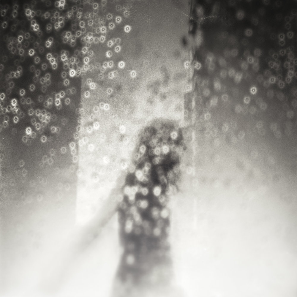 Rapture in the Rain | Diana F+ | Darren Rose