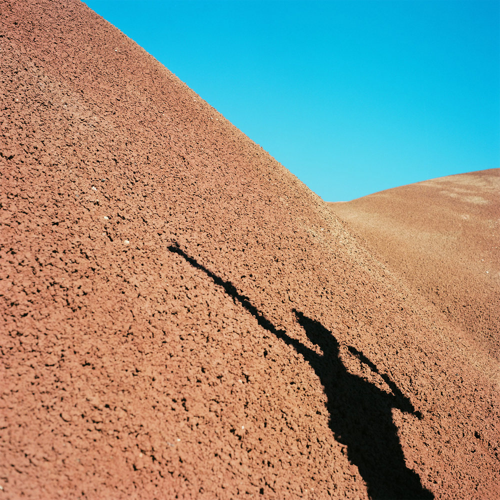 Peter Pan's Shadow | Yashica Mat 124G | Kodak Ektar | Gabi Roozee